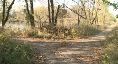 Wooded area where remains found
